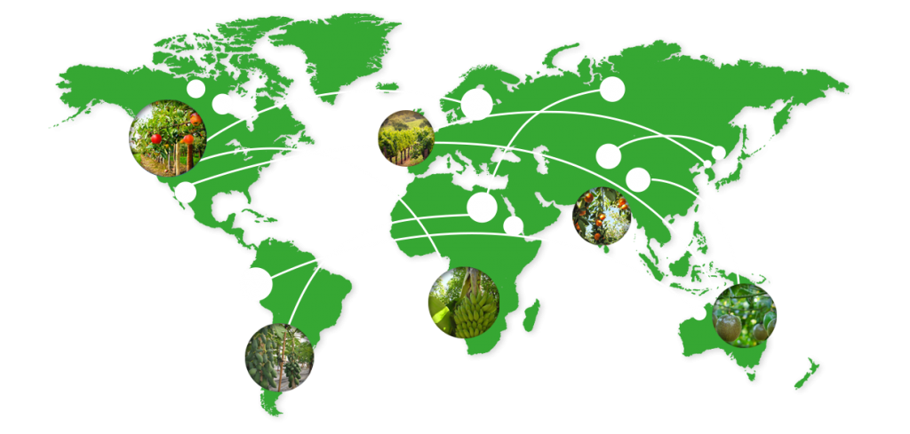 GoGlobal Map, Logistics Company In South Africa, Specialized Logistics