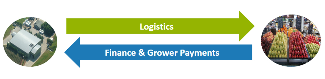 iroot logistics management software
